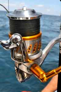 The best popping/jigging reel money can buy: the outstanding Shimano Stella