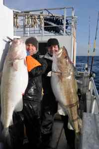 Two enormous 60lb+ cod caught off Lauklines