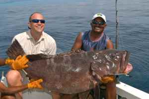 BIG GROUPER CAUGHT ON ONE OF SEVERAL FOLLOW UP GROUP TRIPS
