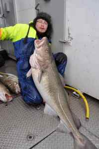 Kim Erik with his monster cod: 73lb 4oz!