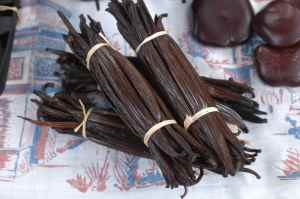 MADAGASCAN VANILLA, REASON ENOUGH FOR THE TRIP!