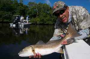 Capt Jim Wilcox releasing a good redfish
