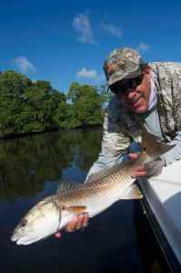 Capt Jim Wilcox releases a nice Everglades redfish, Bud n' Marys group trip 2012