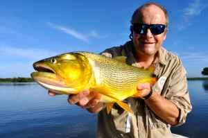 Dorado, an amazing freshwater sports fish