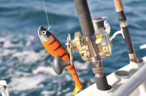 Storm Giant Jigging Shad, Shimano Trinidad 30 and Shimano STC 20-30lb class rod; the perfect outfit for Norway