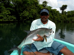 Jungle river tarpon Belize