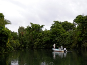 Fishing Monkey River