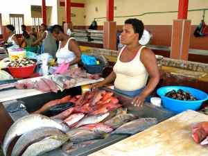 Local fish market, Sao Vincente, Cape Verde Islands