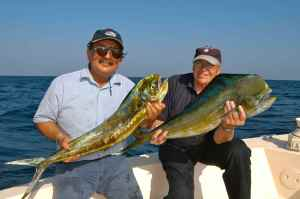 Bill Chisholm & Dr Kanna with dorado caught off the Fahal Buoy, Muscat, Oman