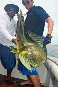 Bull Dorado caught off Las Perlas