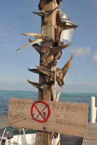 No fishing from 'de dock'!