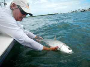 Capt Bill Basset releasing a bonefish