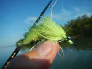 My Bug Eyed Bunny, a great fly for tarpon and, now, snook!
