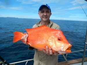 Simon Hughes with one of several beautiful looking, and sweet tasting, humphead snapper caught at the drop off