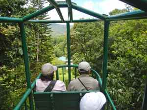 Cable car ride through St Lucian rain forest