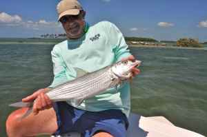 A 6lb bonefish from the flat in front of Bud n' Mary's for Andrew Leaves