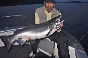 Biggest salmon of the week, a 30lb 8oz chinook caught at first light