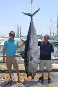 This is the size of tuna caught off Javea!