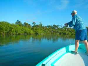 Working the mangroves for snook & tarpon