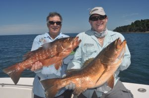 A brace of nice cubera snapper for Del & Ray.