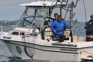 Another fine fish is netted aboard one of Central Coast Adventure's fleet of Grady White sports fishers.