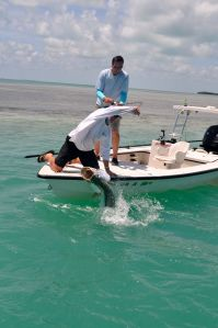 Gotcha! Big tarpon are the number one attraction during spring time in The Keys