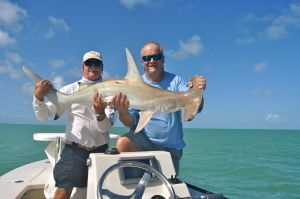 My first hammerhead shark with Capt. Bill Bassett, just need to find a thresher now...