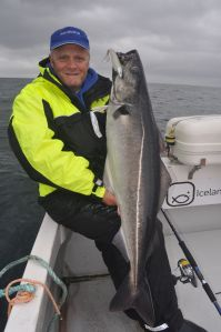 My first fish caught at Sudavik, a 30lb plus coalfish.