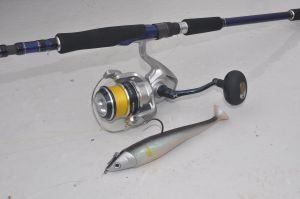 Blue Romance STC spinning rod, Shimano Saragosa 5000 and a Storm Ultra Shad, deadly for big coalfish & cod.