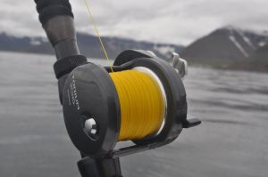 The new Shimano Torium 20HG, an outstanding reel for deep water fishing for big fish.