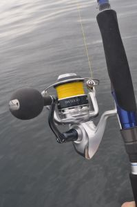 Saragosa SW5000 fixed spool loaded with PowerPro, an excellent saltwater reel for targeting big fish.