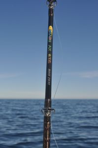My first choice jigging rod for Norway & Iceland.