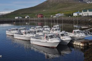 The excellent self-drive boats as supplied by Iceland Sea Angling.