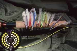Flies for striped bass. As you would expect Clouser Minnows & Lefty's Deceivers always are popular patterns