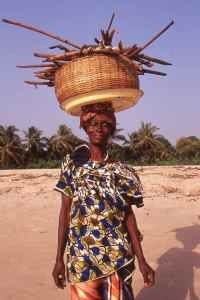 Women collecting drift wood for cooking, Mahera Beach, Sierra Leone