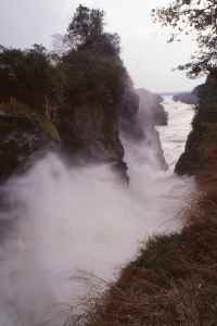 The 20ft gap where the entire Nile pours through at Murchison Falls