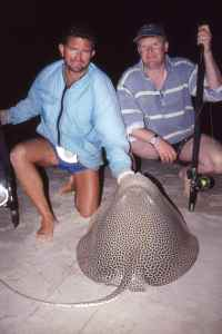 Honeycomb ray caught from the beach at Benguerra Island Lodge